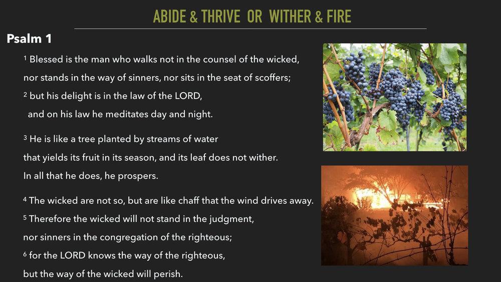John 15:6-11.005.jpeg