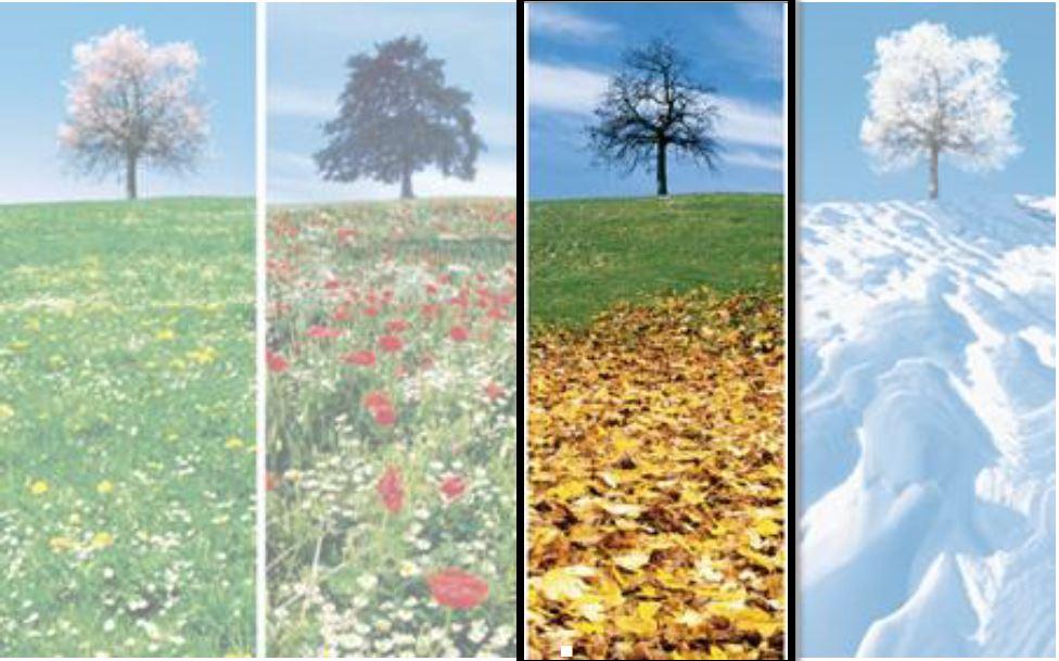 Herbstanlass.JPG