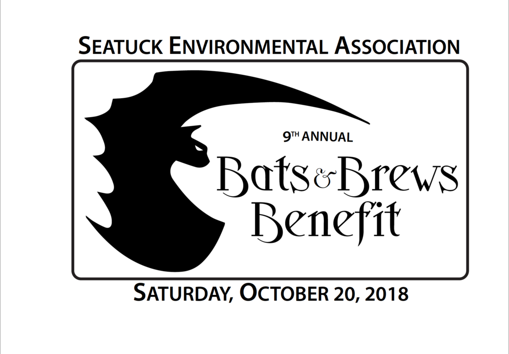2018 Bats 9th annual art.png