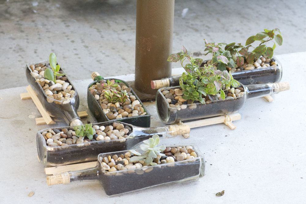 Cut Wine Bottle Planters.jpg