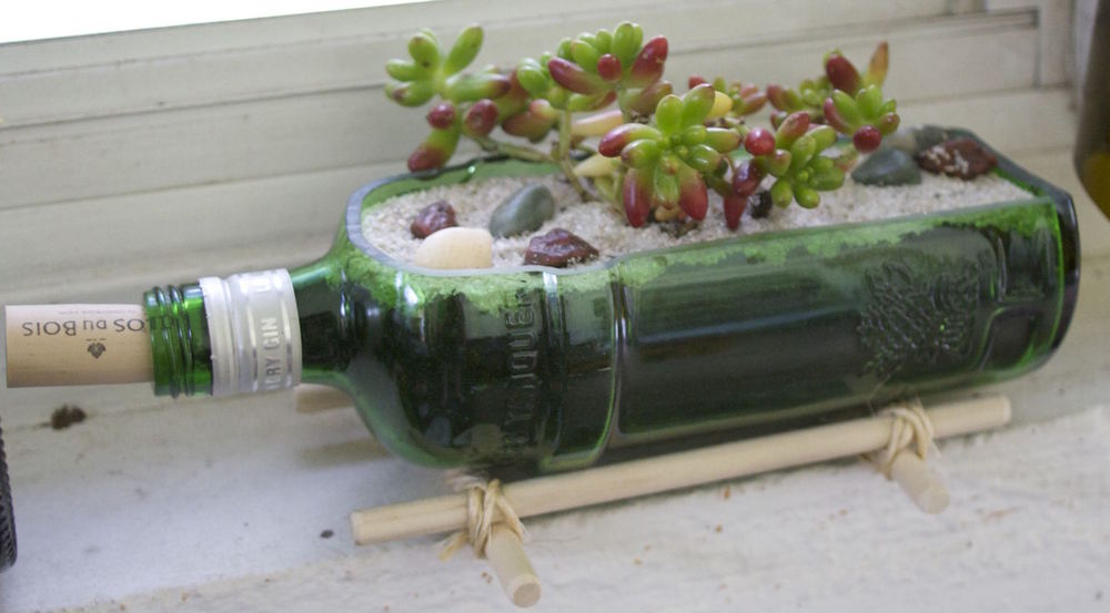 Bottle Succulent Holder