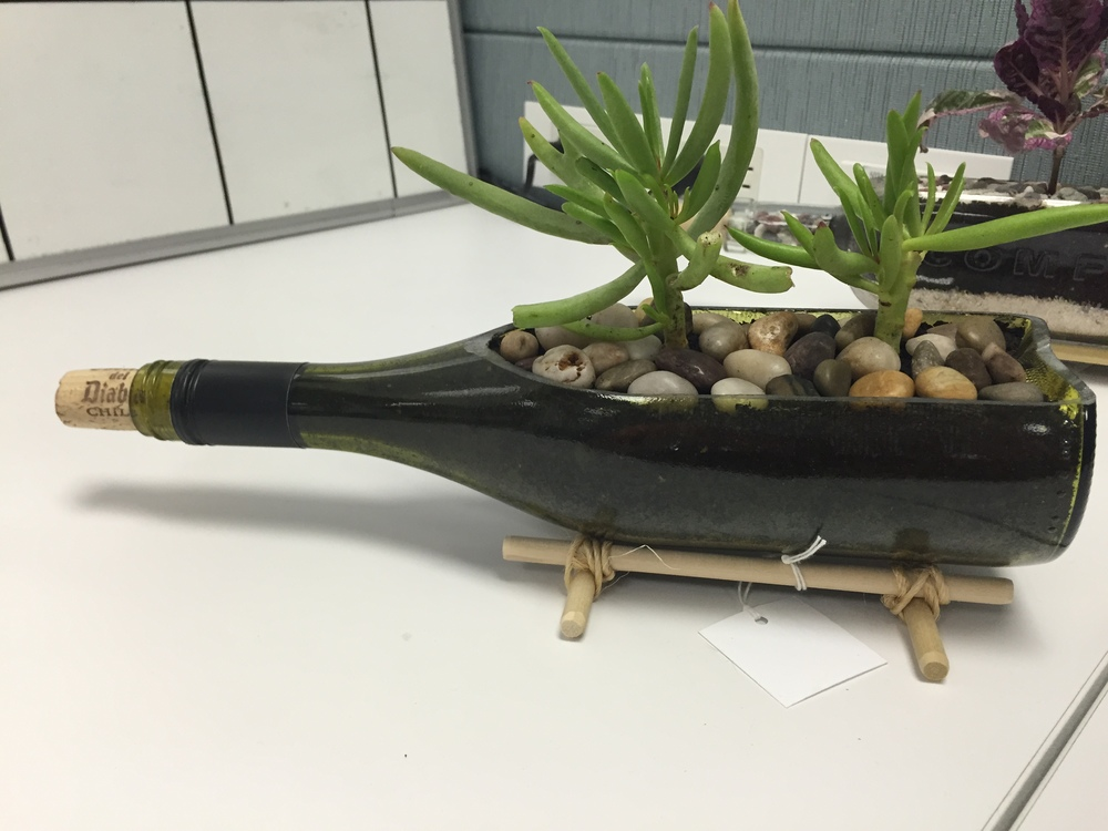 Wine Bottle Succulent Holder