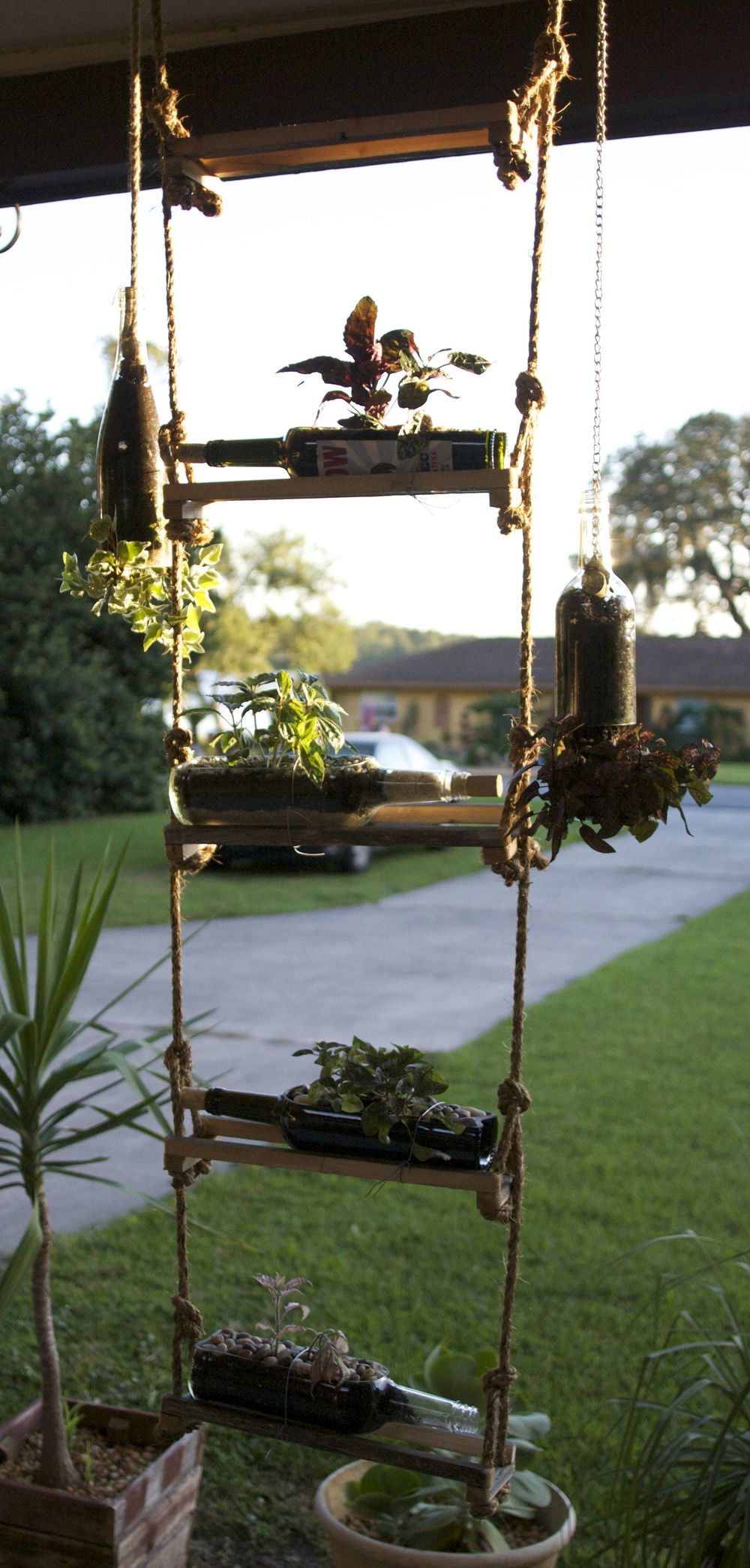 Wine Bottle Succulent Planter Ladder Holder