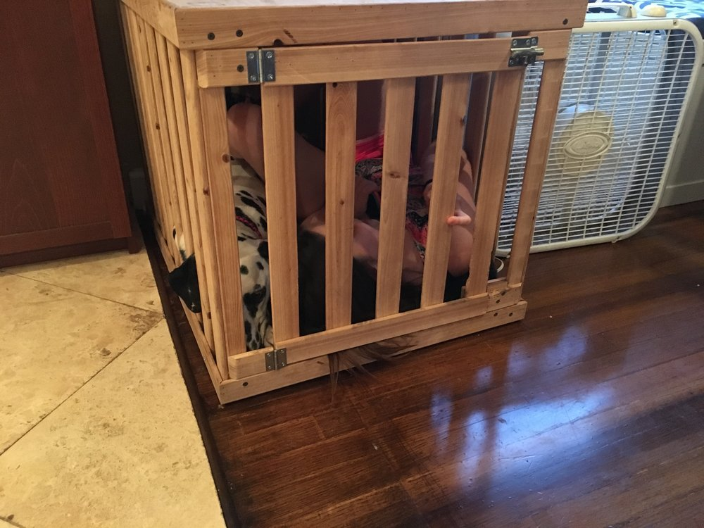 Cypress Wood Dog Crate