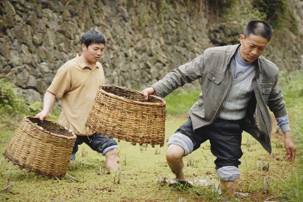 AW_China5.jpg