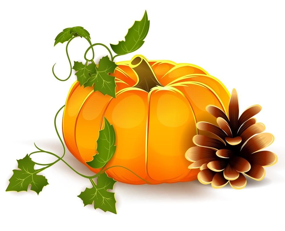 pumpkin, fin.jpg