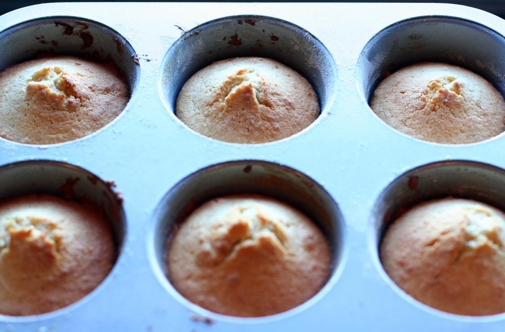 cakes in pan.jpg
