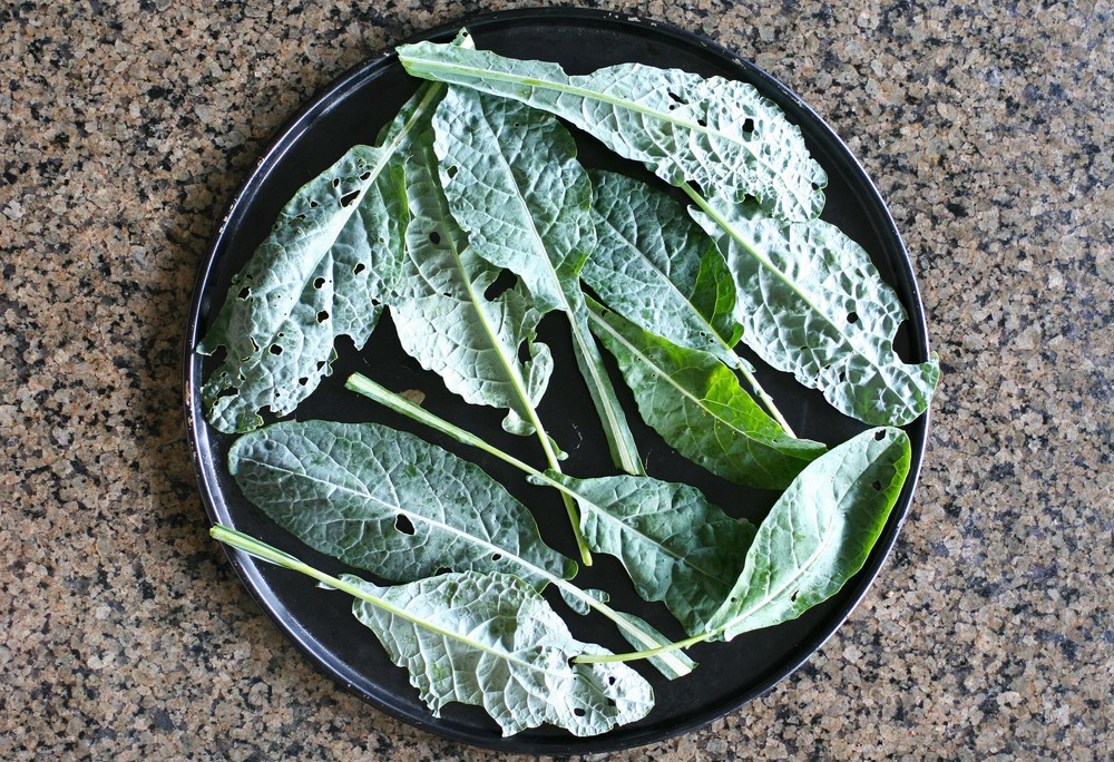 raw kale plate small.jpg