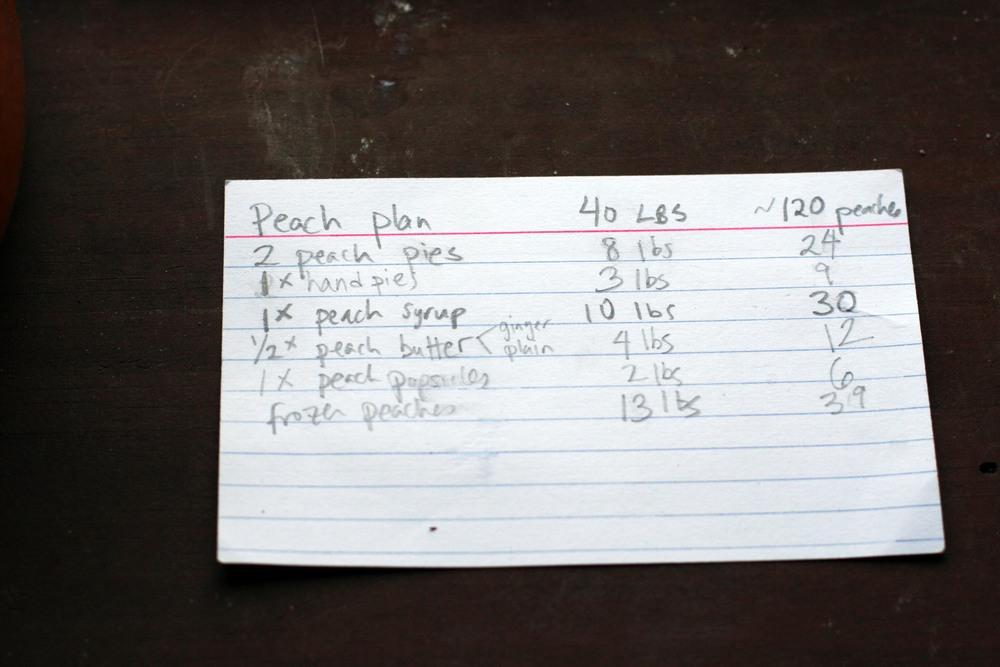 peach plan card.jpg
