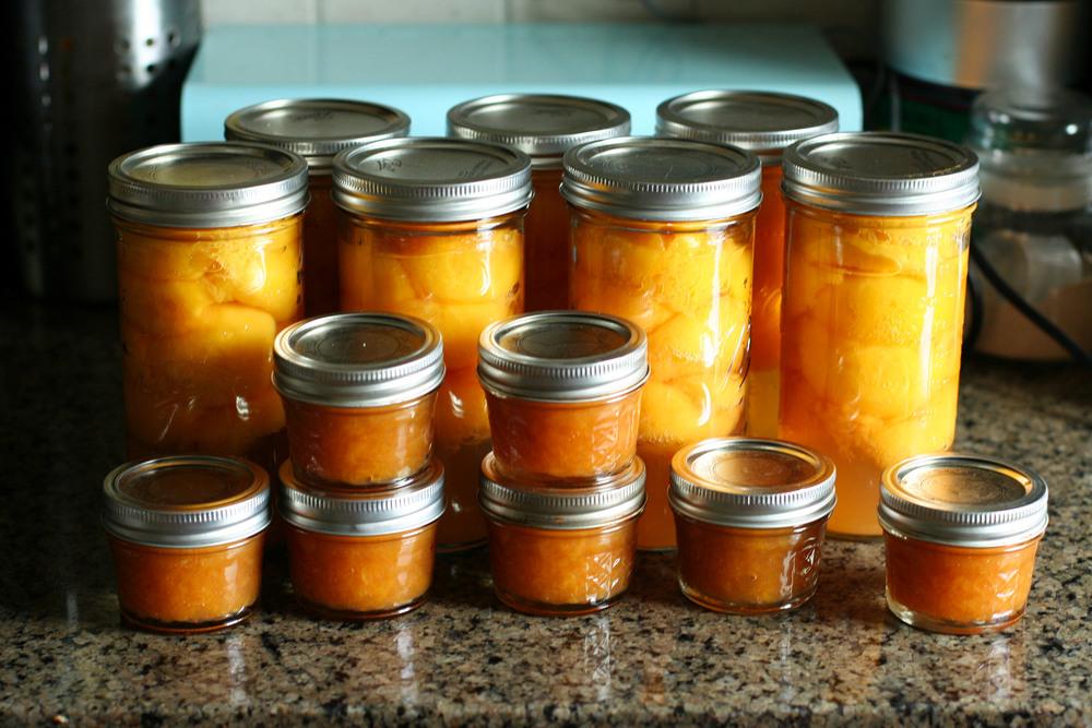 peach family in jars.jpg