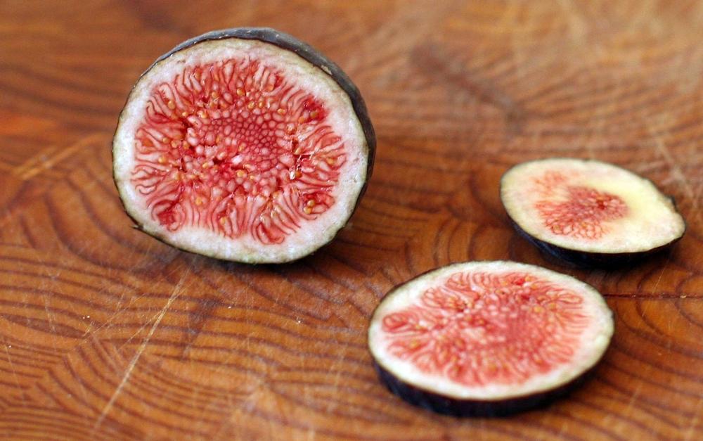 figs_cut.jpg