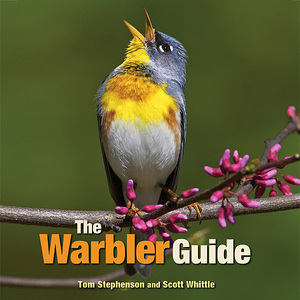 The Warbler Guide http://www.thewarblerguide.com/