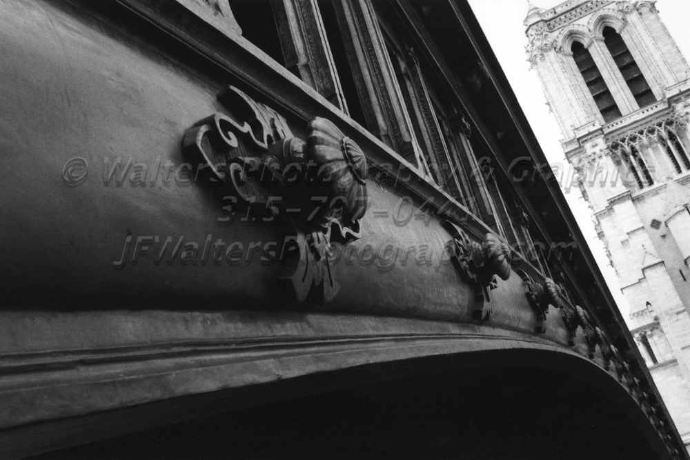 Notre_Dame_1102_11.jpg