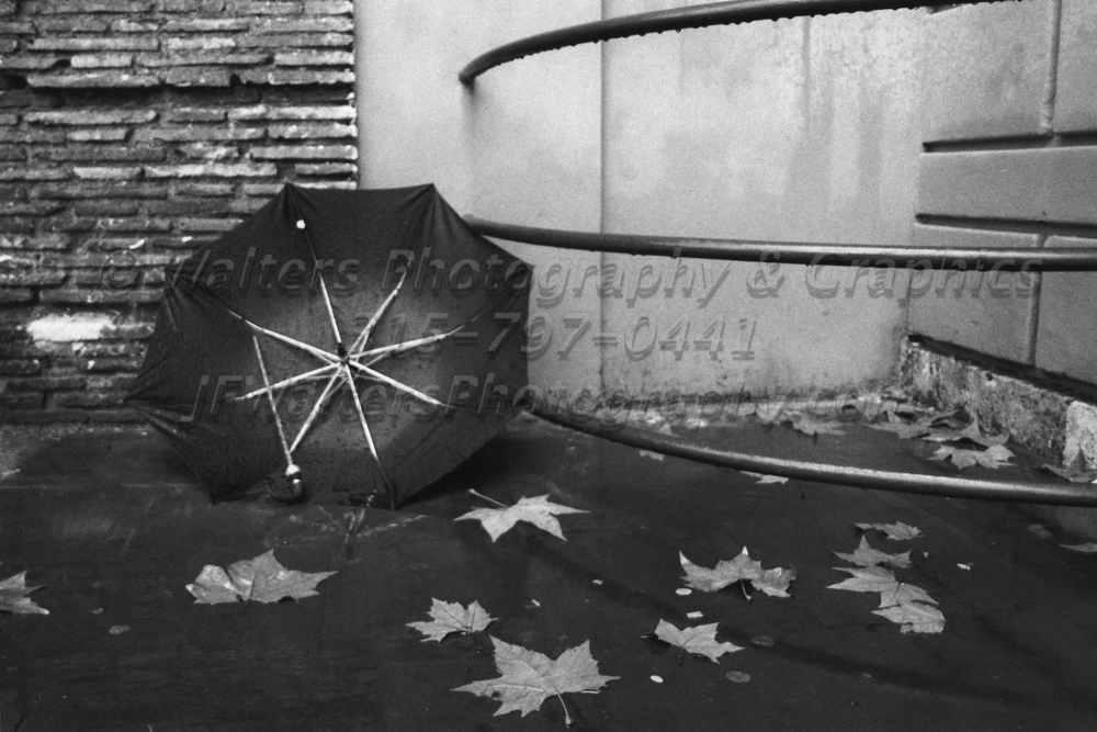 Umbrella_2746_25A.jpg