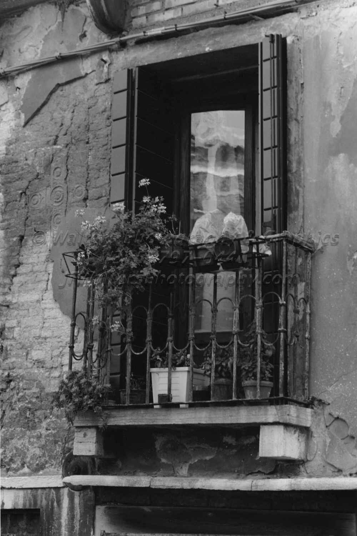 Window_8156_05A.jpg