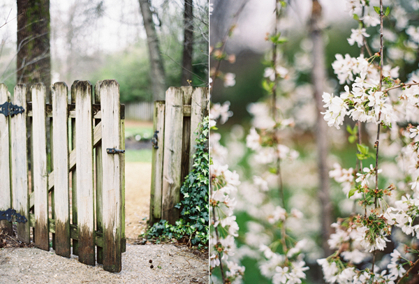 white-picket-fence-garden-gate-spring-blossoms-white.jpg