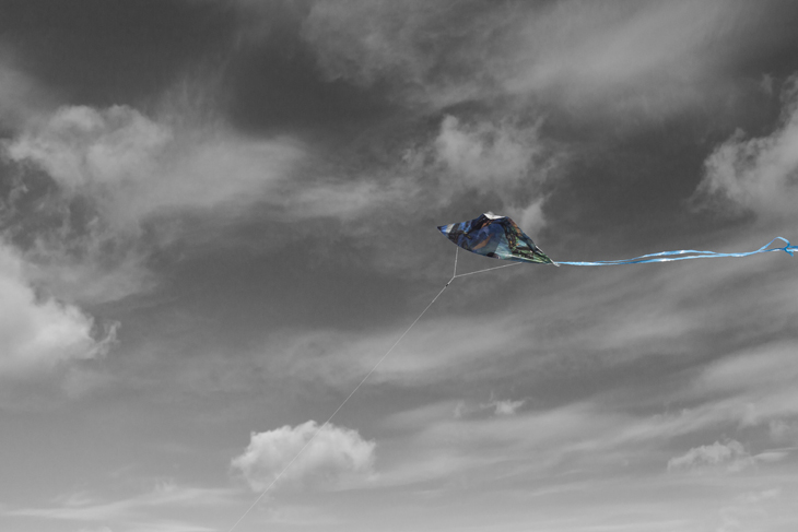 A Kite on Wading River Beach