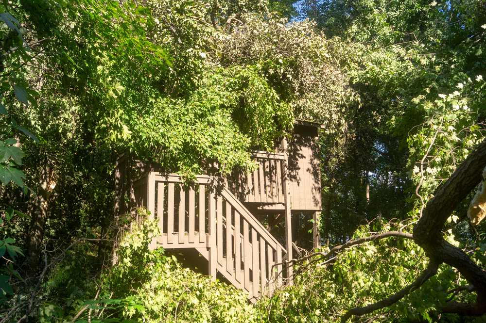 One of the treehouses damaged by the storm