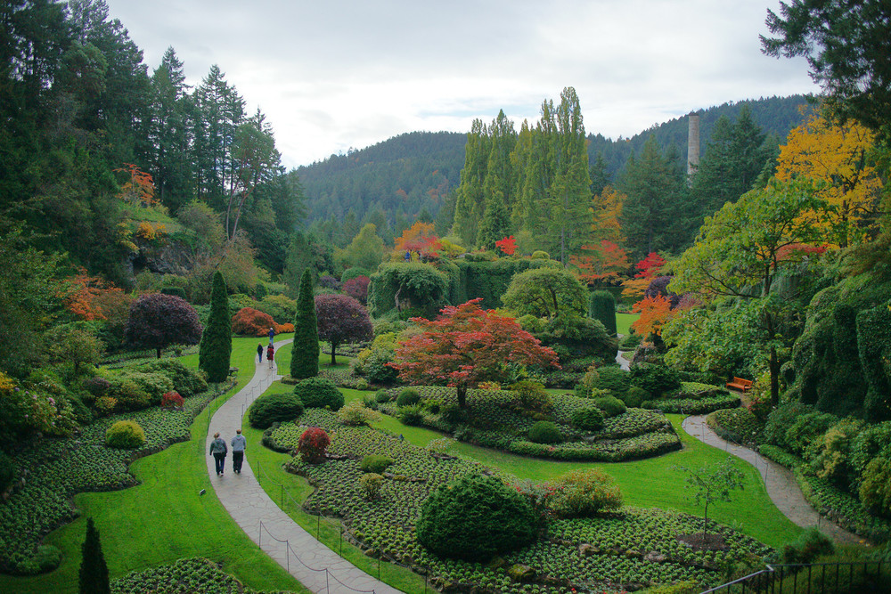 """Fall"" at the Japanese Sunken Garden (Butchart Gardens, Canada)"