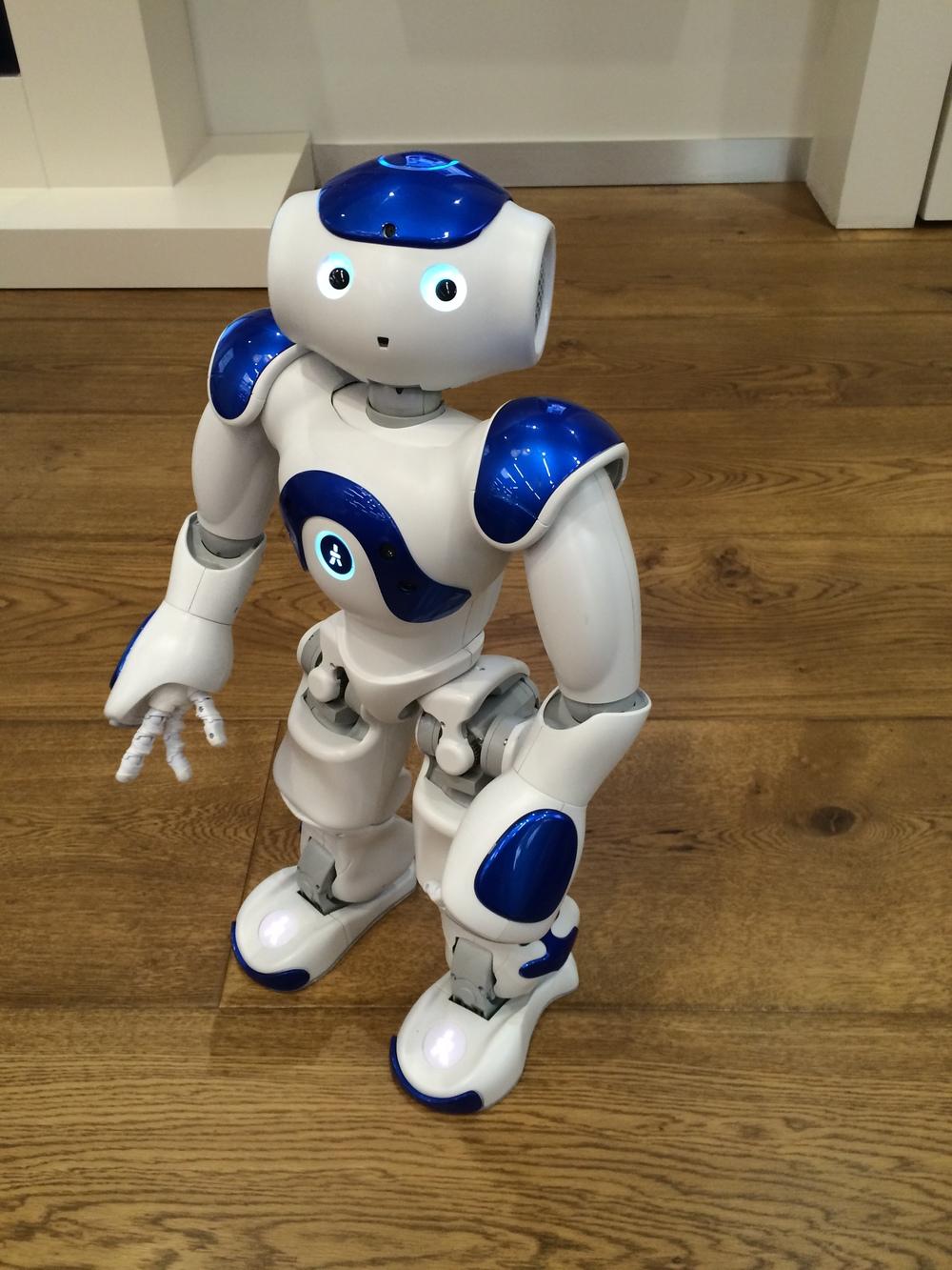 robots as companions are we ready maneesh juneja. Black Bedroom Furniture Sets. Home Design Ideas