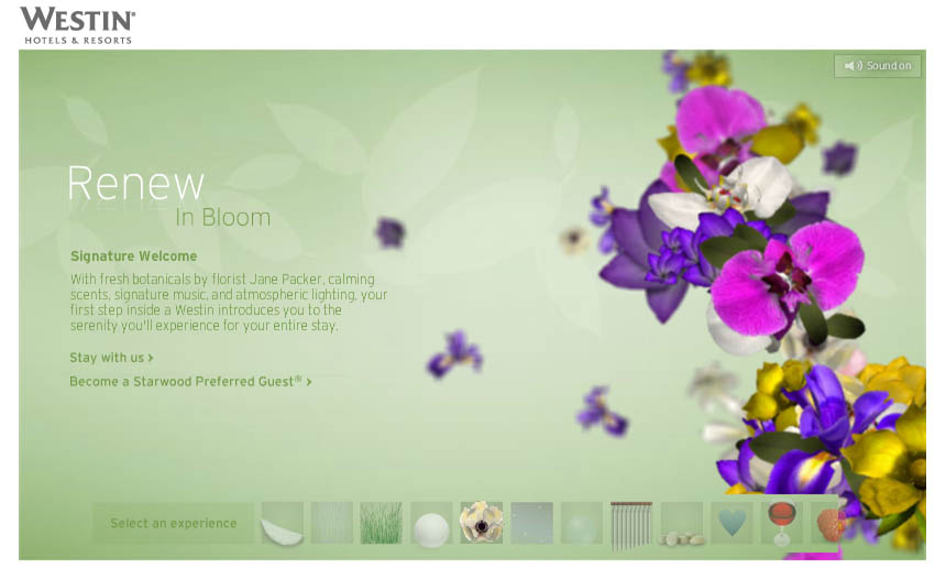 westin_0006_in bloom.jpg