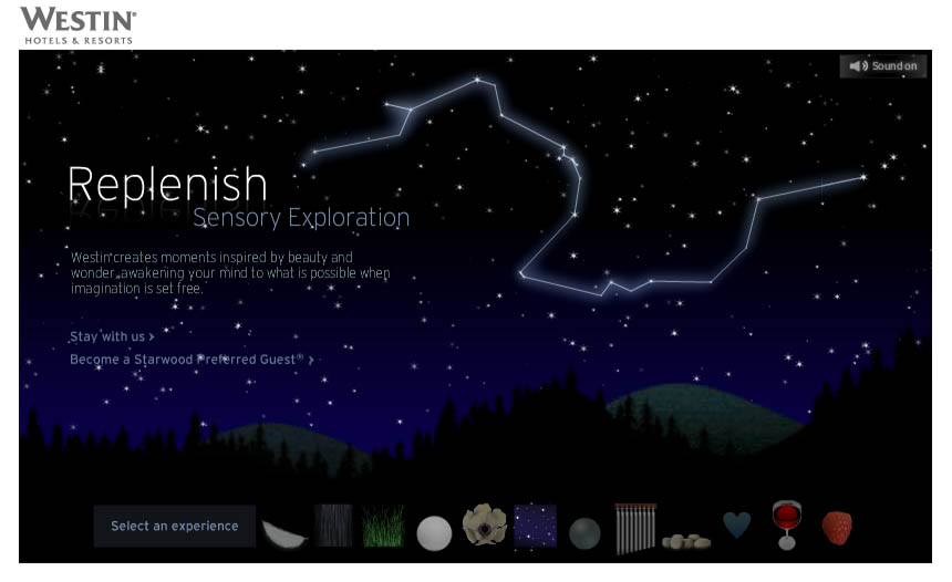 westin_0007_sensory_exploration.jpg