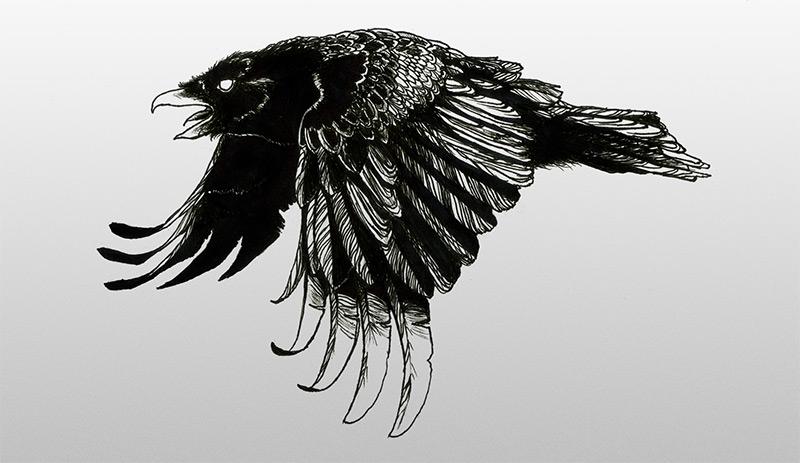 birds — Simona Lo