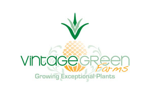 Vintage Green Farms with Tom Piergrossi