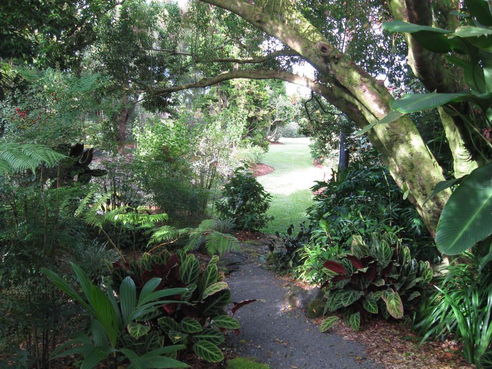 walkway shot