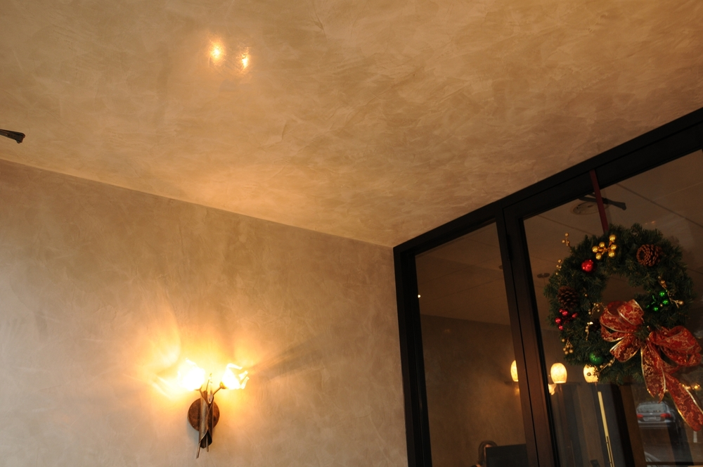 Venetian Plaster on walls and ceiling in foyer entrance.