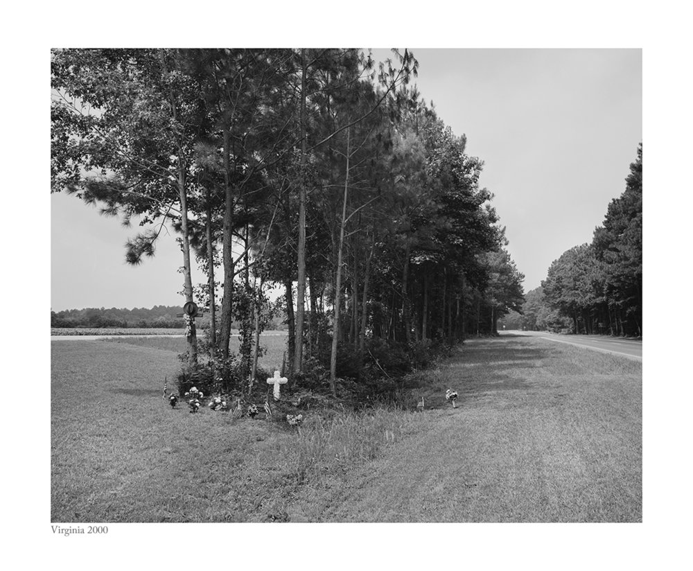 Virginia roadkill copy copy.jpg