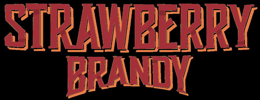 S Brandy Logo_8x3_300dpi.png