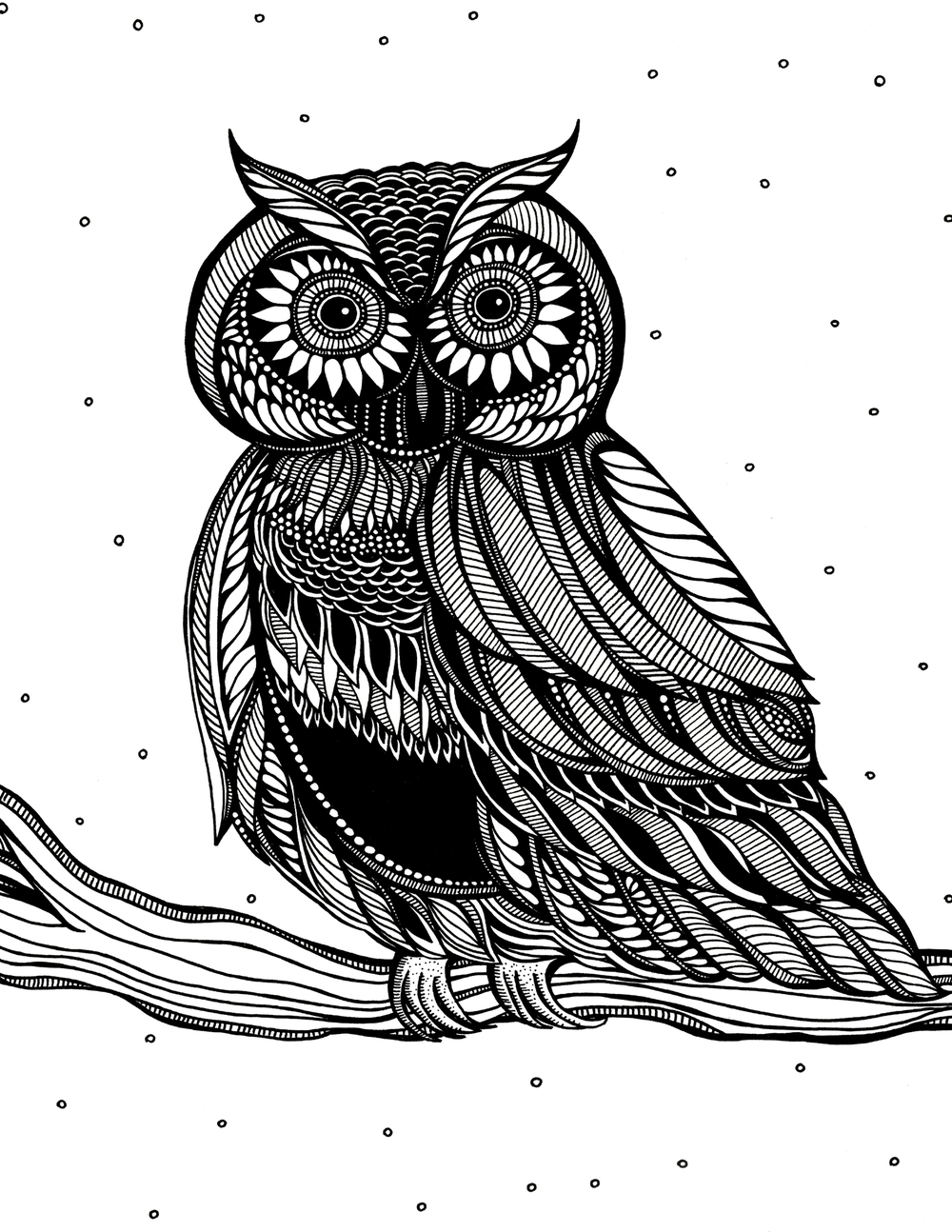 owl_worksheet.jpg