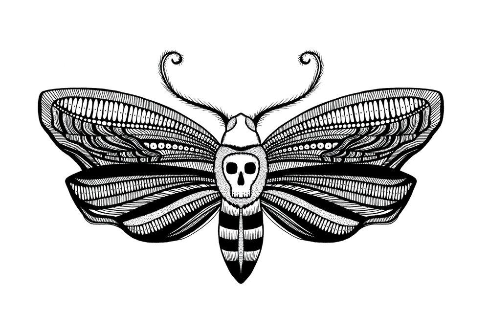 deathmoth_1200.jpg
