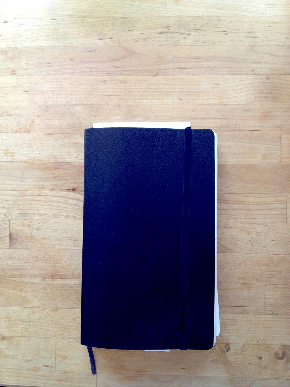 My moleskin day planner.  i would be lost without it.  Bonus notebook space in it as well.