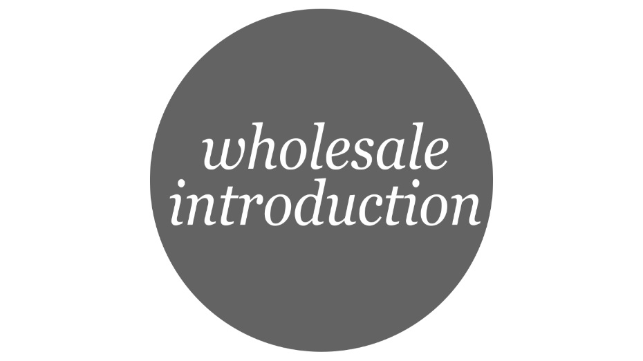 RETAIL ASSEMBLY Wholesale Introduction online workshop.jpg