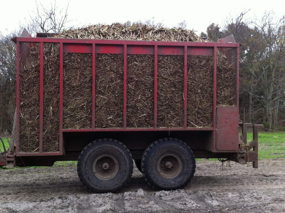 12 Ton Sugar Cane Wagon On 22,500 Lb. Bud Truck Axles.  They Last A Long, Long Time.         P