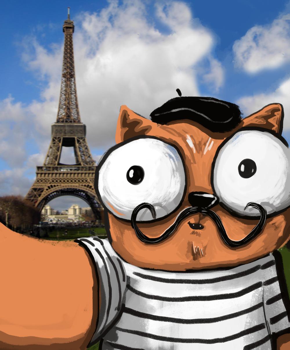 french cat 6.jpg