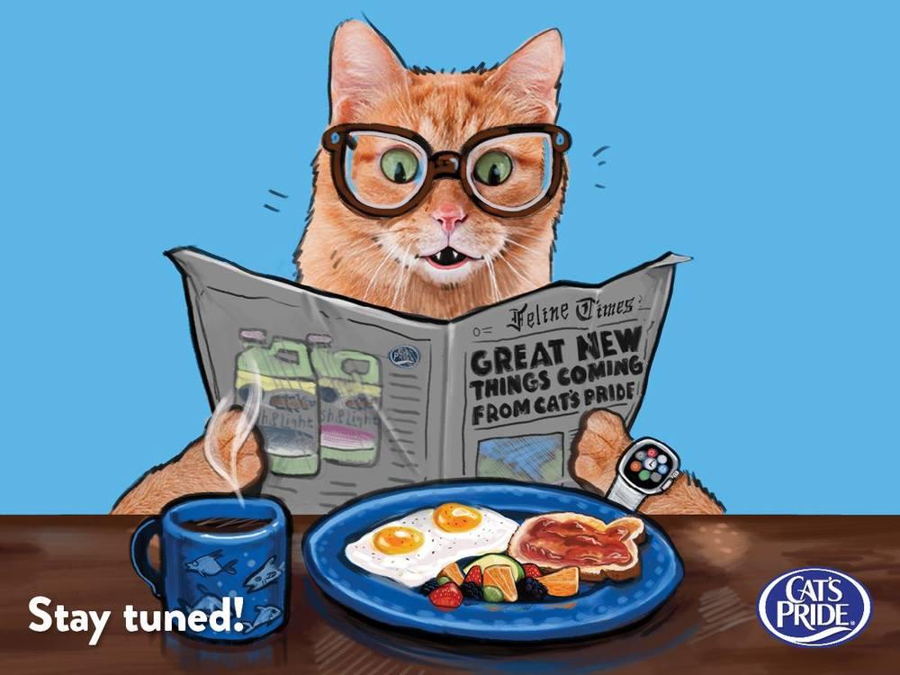 CatsPrideSocial1.jpg