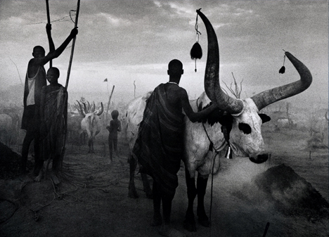 Dinka group at Pagarau, Southern Sudan , from the series  Genesis , 2006