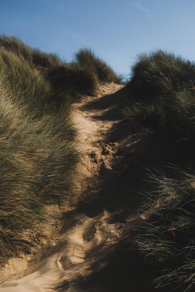 Dunes-1.jpg
