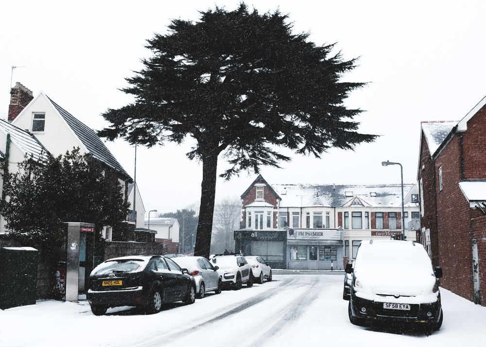 Snowfall-5.jpg
