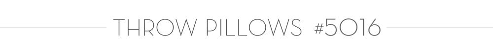 PILLOW 5016.png