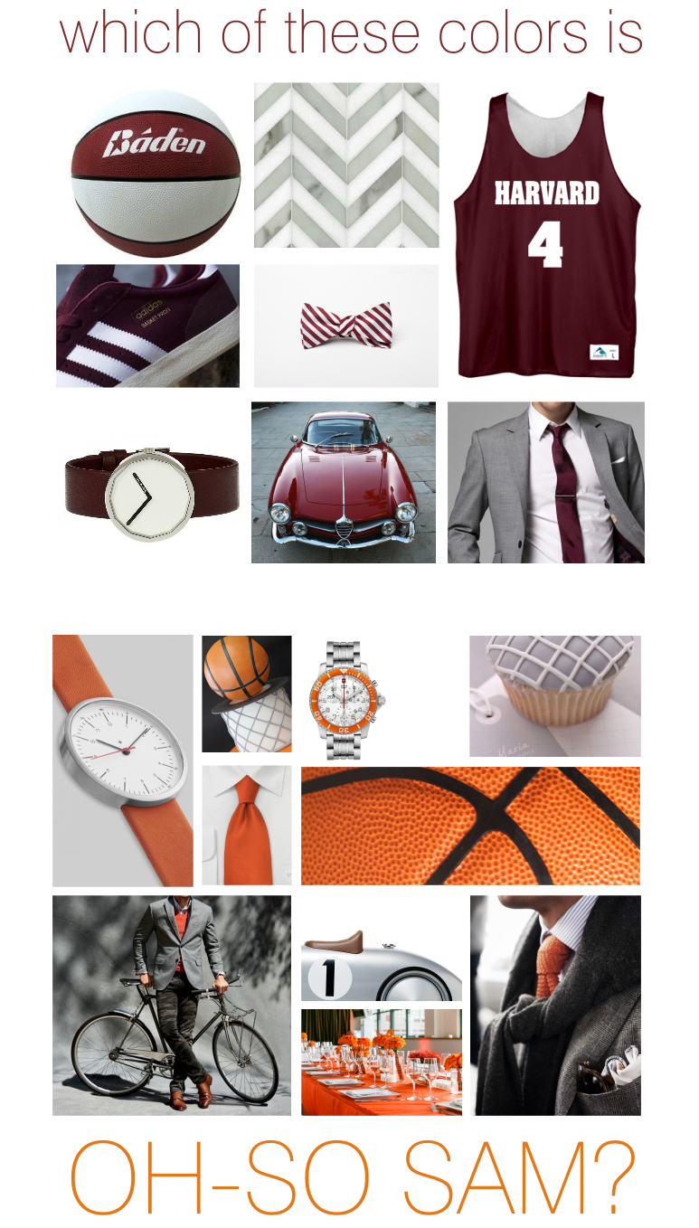 hostein inspiration board color options e-t.png