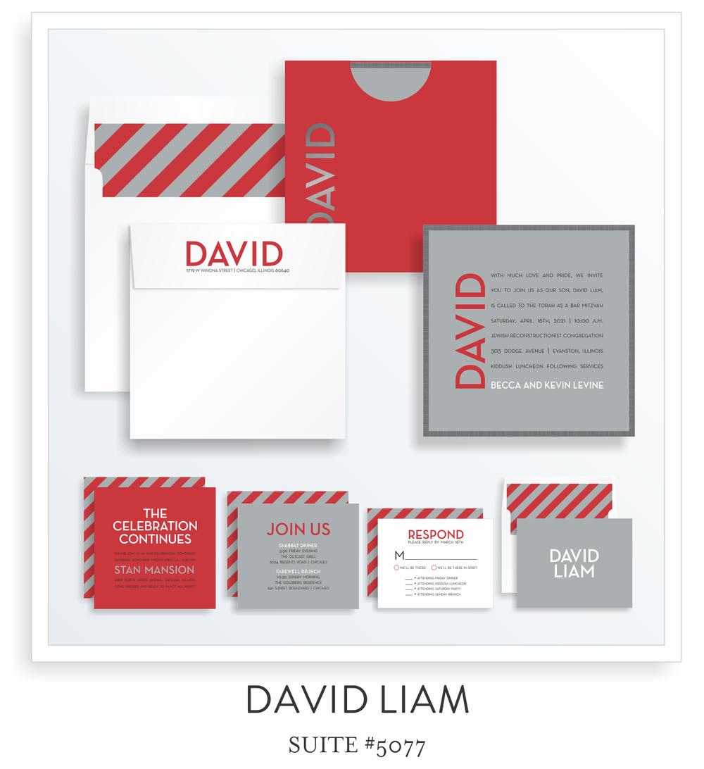 5077 DAVID LIAM SUITE THUMB.png