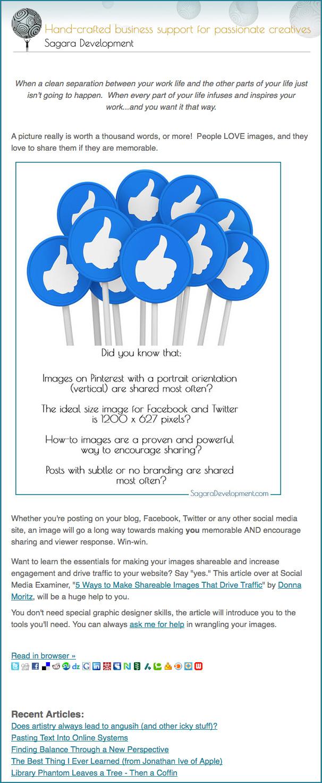 Newsletter-Image-2013-blue.jpg