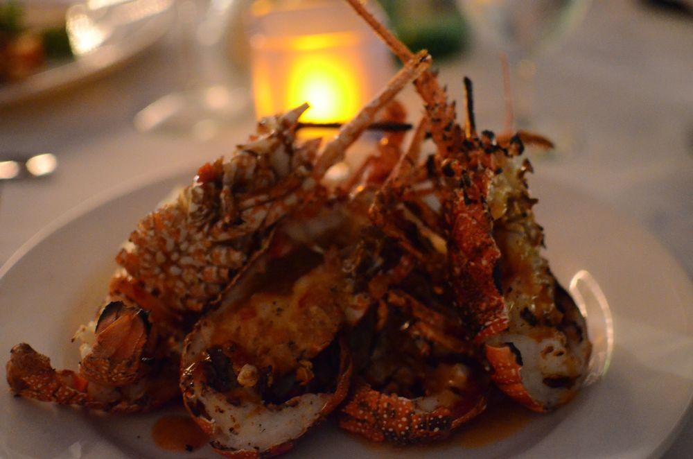 Ocean Echo Crayfish.jpg