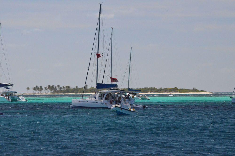 Tobago Cays - boats.jpg