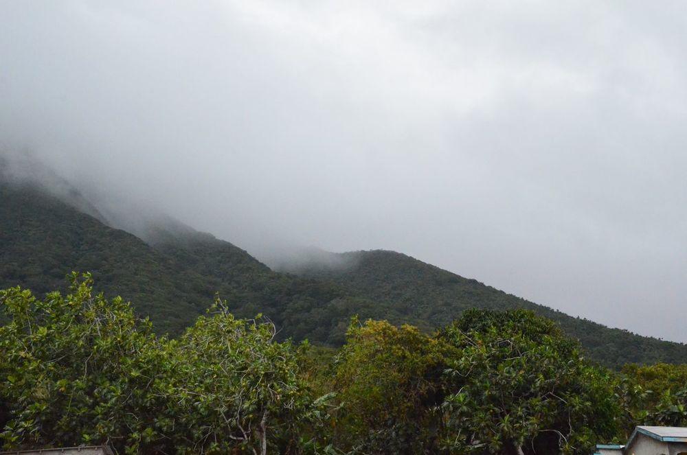 Mt Nevis Hike 5.jpg
