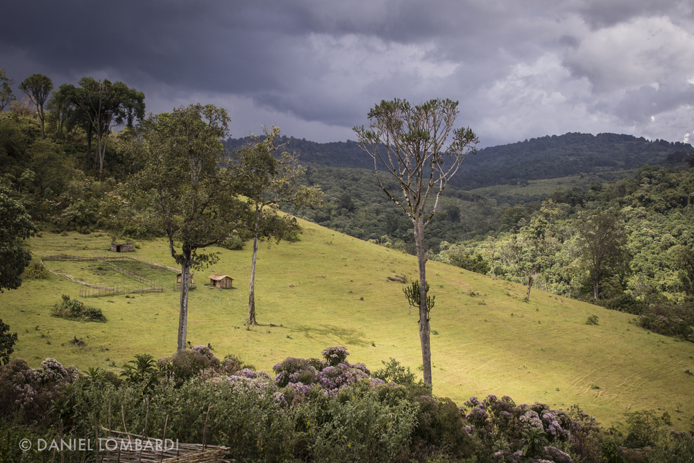 Sunshine illuminates a grassy hill through a break in a large storm brewing at the summit of Mount Elgon on the border of Kenya and Uganda. The Mount Elgon massif is large and collects ample rain water but steep and rough terrain makes infrastructure expensive and difficult to implement.